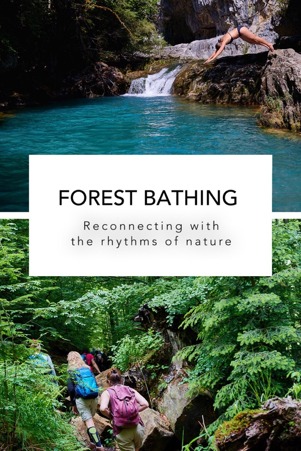 Forest Bathing Reconnecting with the rhythms of nature Casa Cuadrau