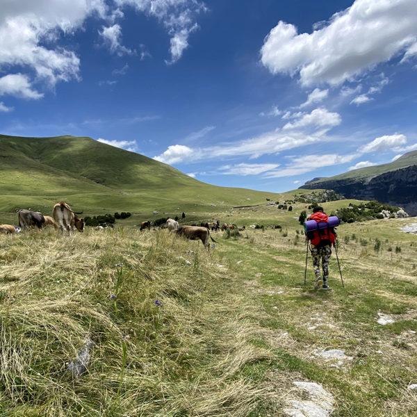 peregrinaje-casa-cuadrau-yoga-senderismo-pirineos